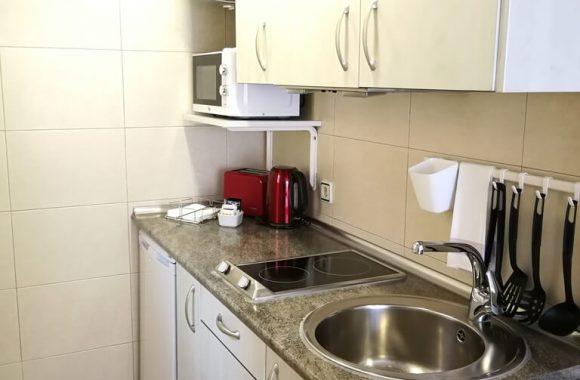 Hotel Apartamentos Aralso (Centro) - Estudio Superior